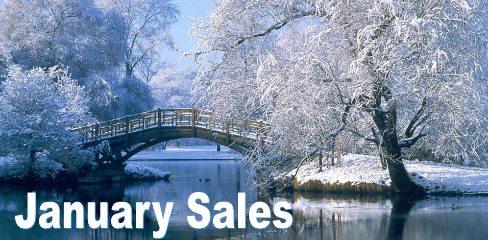 January-Sales-1