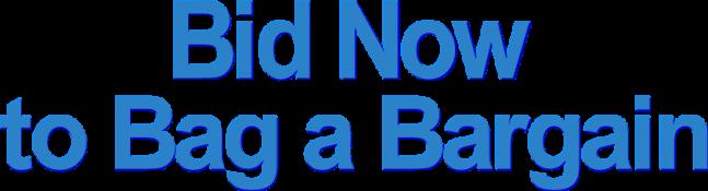 Bid-now-bargain-2